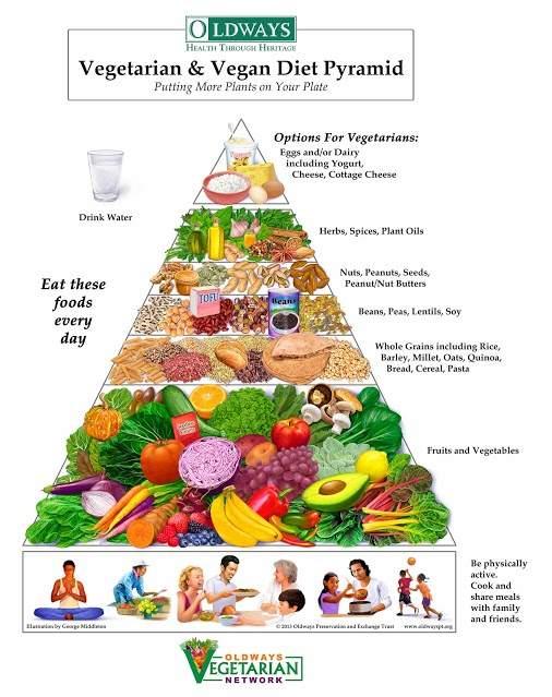 Vegetarian Vegan Diet Pyramid 2014 www.alashrafedu.com1