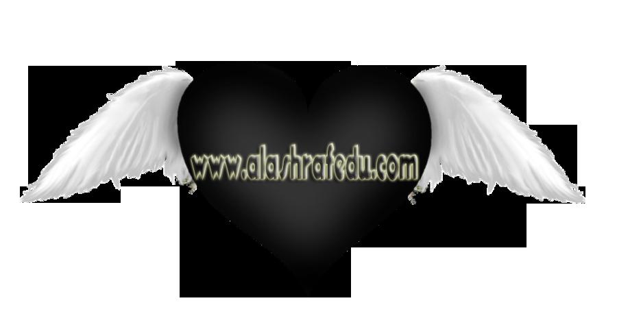 Black Heart With Wings Transparent 2019 www.alashrafedu.com1