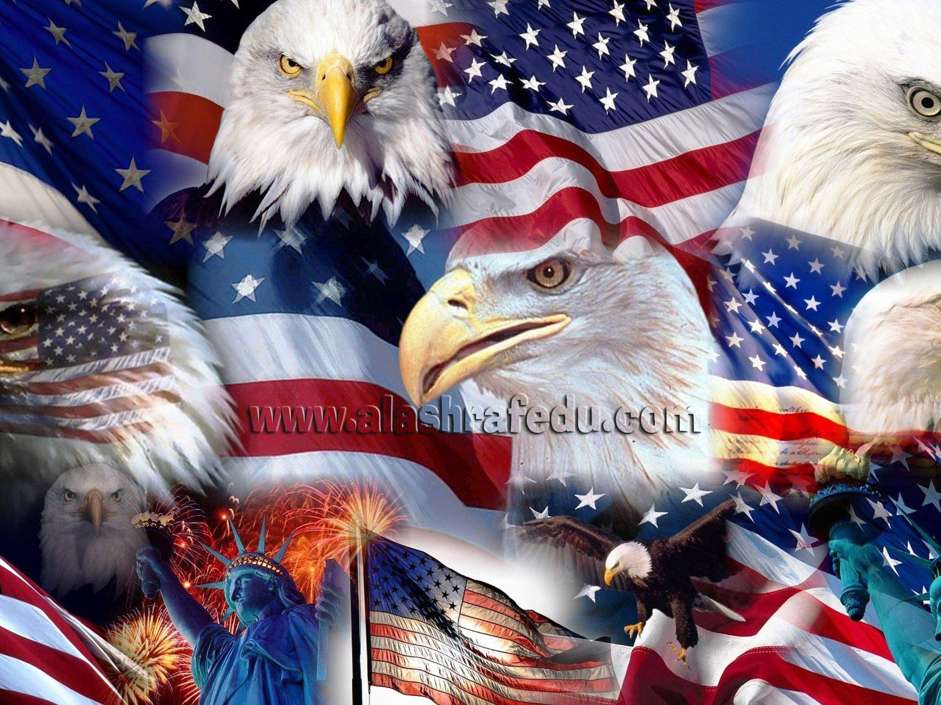 الرموز الأمريكية العلم تمثال الحرية النسور الأصلع www.alashrafedu.com1