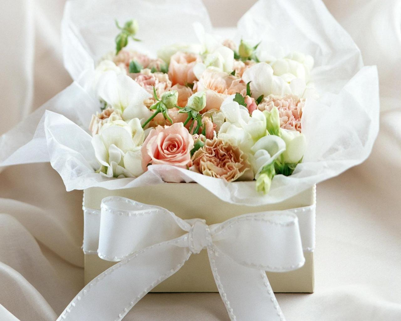 White Rose Flowers 2019 www.alashrafedu.com1